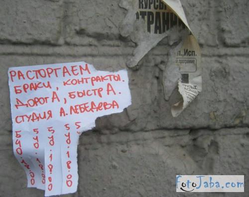 fotojaba_artemii_levebed (13)