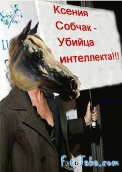 ФотоЖаба на Ксению Собчак с плакатом - фото 14