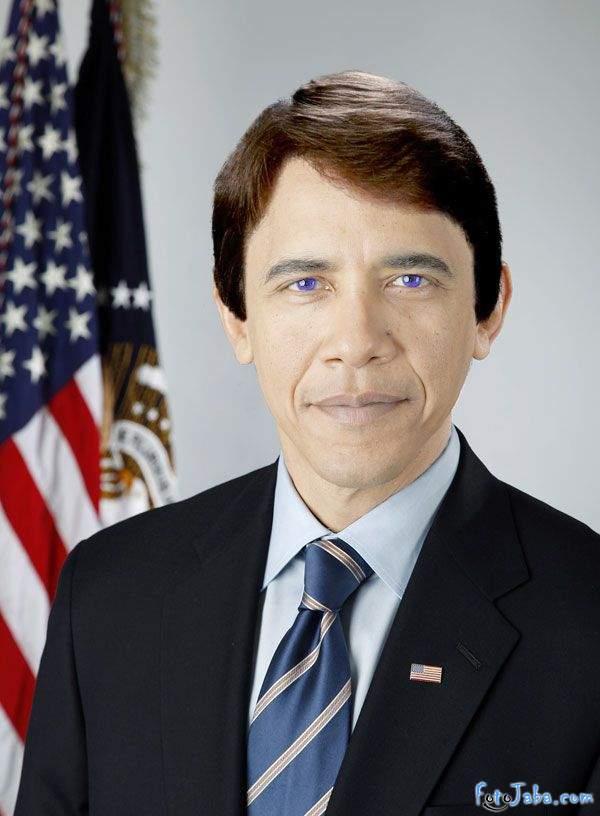 ФотоЖаба на официальный Портрет Барака Обамы - фото 2