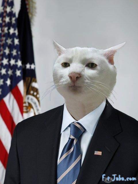ФотоЖаба на официальный Портрет Барака Обамы - фото 3