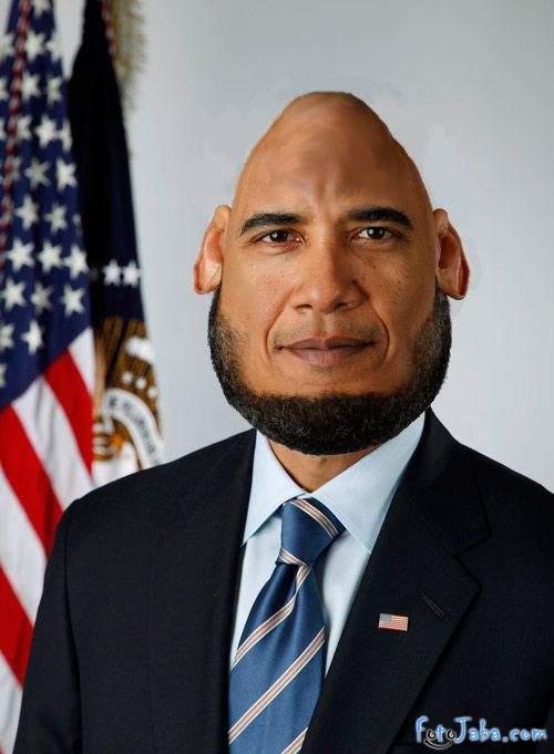 ФотоЖаба на официальный Портрет Барака Обамы - фото 35