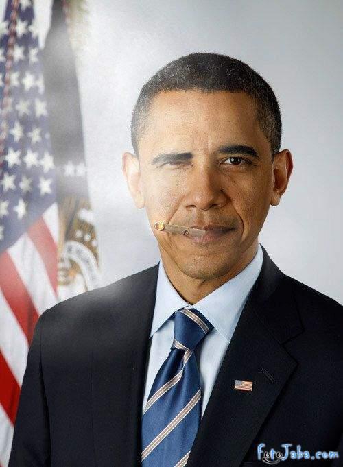 ФотоЖаба на официальный Портрет Барака Обамы - фото 8
